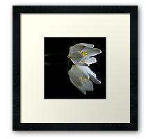 Peaceful Beauty 2 Framed Print