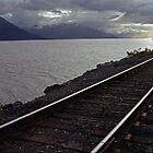 Alaska Rail by Michael  Moss