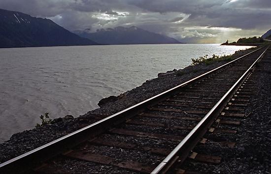 Alaska Rail by Michael  Moss