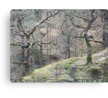 Wild Wales Canvas Print