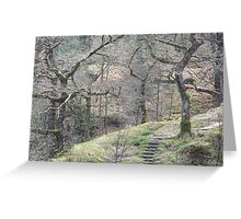 Wild Wales Greeting Card