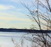 Winter brush over Lake Erie Digital Painting by capturingsmiles
