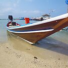 Thai Fishing Boat by Watertoy