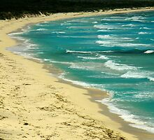 Unspoiled Beach ~ Part One by artisandelimage