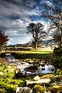 Carperby Stream by Paul Thompson Photography