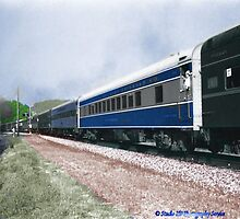 Norfolk and Western's Last Run by Tim Bell