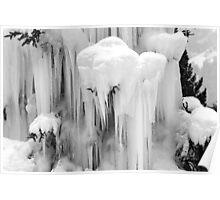 Frozen tree, Grindelwald, Switzerland Poster