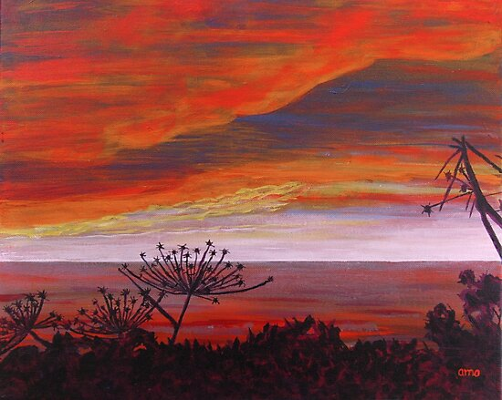 Pacific Fireworks by Angela Micheli Otwell