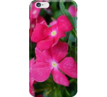 Hot Pink Periwinkle iPhone Case/Skin