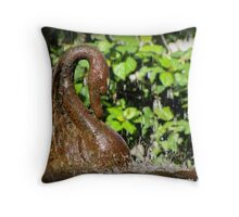 Fountain - Buenos Aires Throw Pillow
