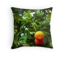 Naranjas amargas Throw Pillow