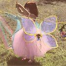 Fairies Washday by Christine Wilson