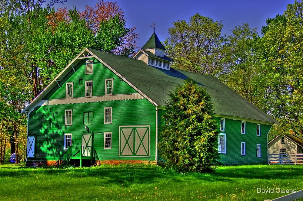 Green barn  by David Owens