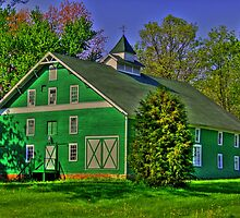 Green barn  by David Owens