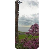 Overlooking The Water......................Bangor iPhone Case/Skin