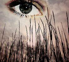 Grassy Eye In The Sky by Brandi Beddingfield