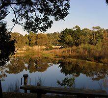 pond at sages cottage baxter by jennifer peters