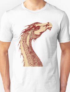 Petoskey Dragon T-Shirt