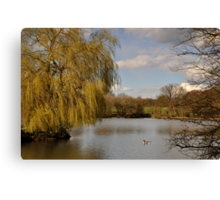 Willow on the Lake Canvas Print