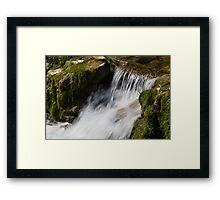 stream in the forest Framed Print