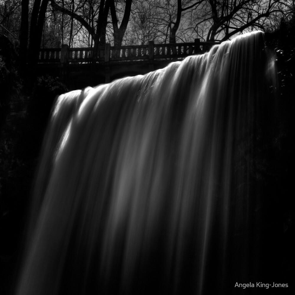Velvet Curtain by Angela King-Jones