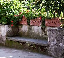 Lover's Bench by phil decocco