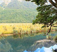 Mirror lake by Jenny Wood