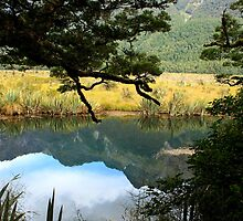Mountain reflections by Jenny Wood