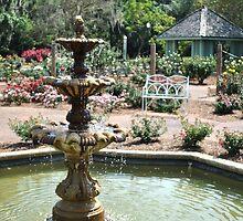 fountain by Douglas Alan Photography