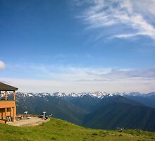 Mountain Lodge at Hurricane Ridge by Stacey Lynn Payne