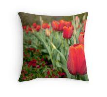 Arc De Tulip - Longwood Gardens USA Throw Pillow