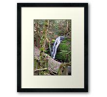 Coal Creek Falls Framed Print