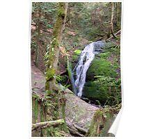 Coal Creek Falls Poster