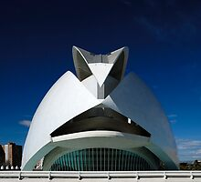 Palau De Les Arts - CAC At noon by Valfoto