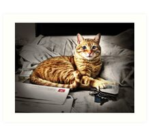 Cattitude Is Everything Art Print
