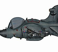 Sea Harrier by Spencer Trickett