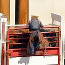 Bronco Rider Saddling Up by NaturePrints