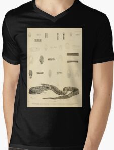 The Reptiles of British India by Albert C L G Gunther 1864 0527 Snakes Mens V-Neck T-Shirt