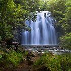 Zillie Falls by Steven Maynard