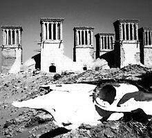 Zoroastrian ghost town - Central Iran by Pól Ó Géibheannaigh