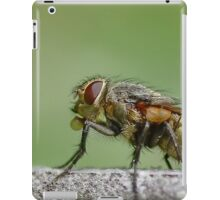 Fly Profile iPad Case/Skin