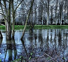 Flooded ...HDR by Nick Bland