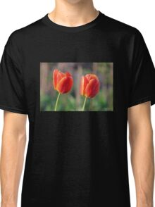Red and Yellow Tulips Classic T-Shirt