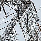 Electrifying Nevada by Lynn Wiles