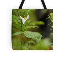 A Damp Woodland Tote Bag