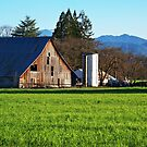 Country Side Barn by ShutterlyPrfct