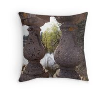 framing spring Throw Pillow