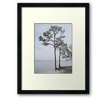 Big Feet Framed Print