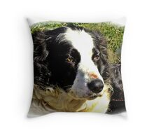 """ Resting after bringing  in the Cows"" Throw Pillow"