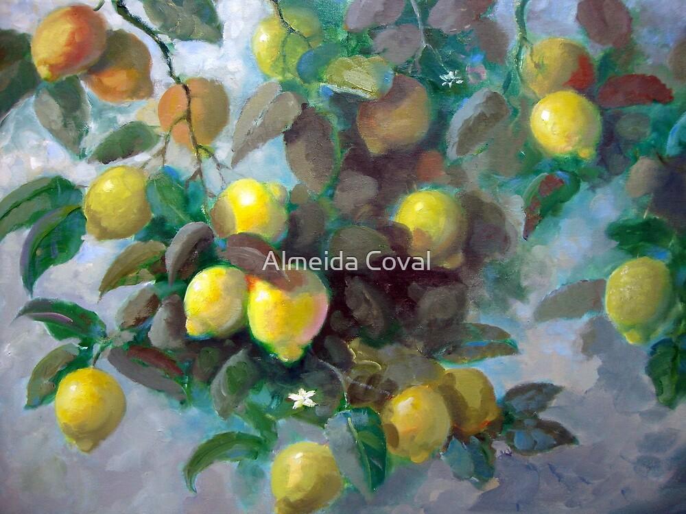 lemons.. by Almeida Coval